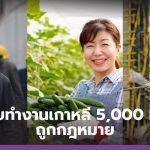 เปิดรับทำงานเกาหลี 5,000 อัตรา ถูกกฎหมาย เงินดี มีสวัสดิการ ส่งเดินทางโดยรัฐบาล